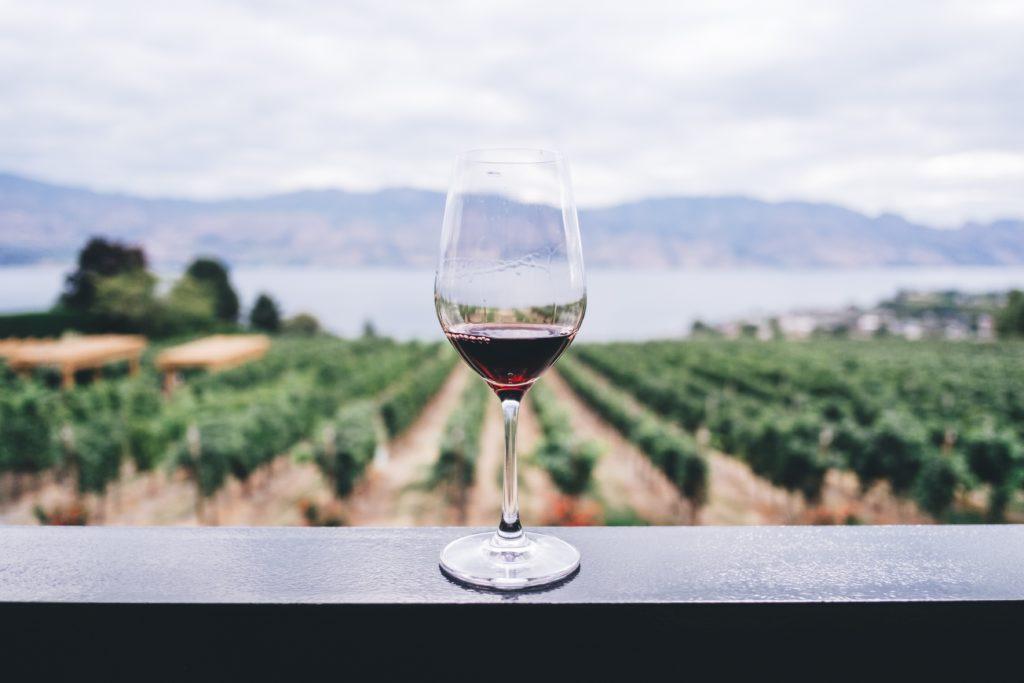 Vinprovningsevenemang: Varje druva har unika egenskaper.